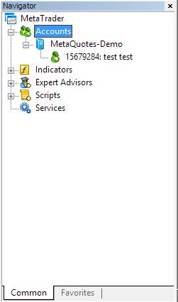 Metatrader 4 demo account - Navigator window with new account