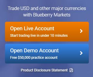 Blueberry Register Button